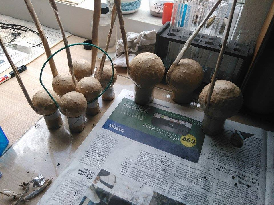 Bday shells